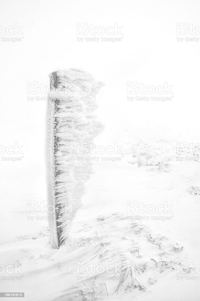 Stake in the snow stock photo