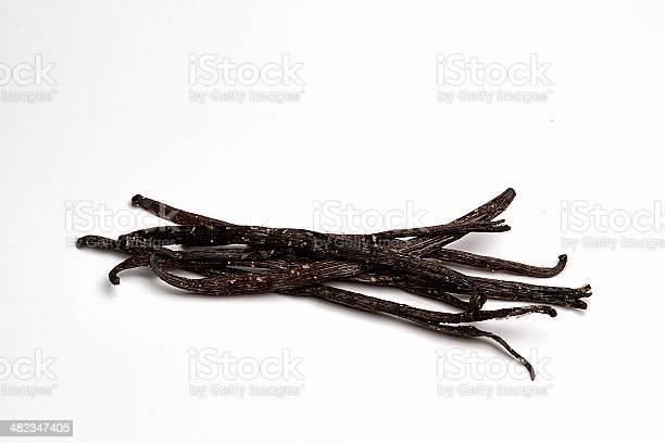 Stalks Of Vanilla Bourbon Freshly Picked Stock Photo - Download Image Now