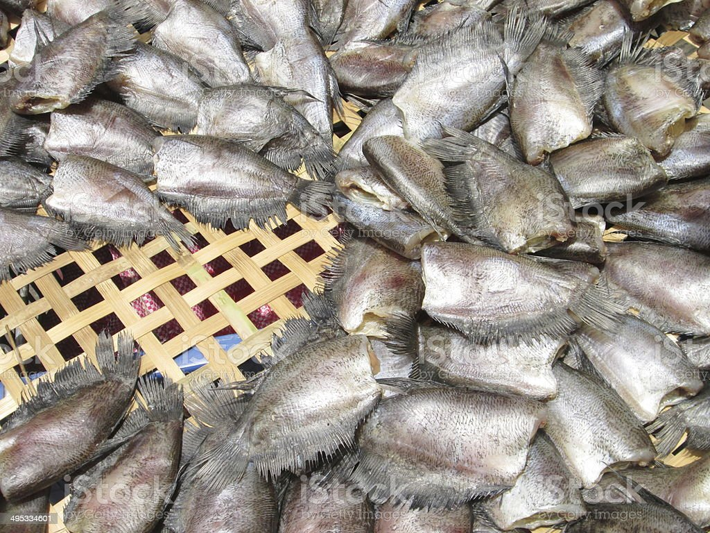 Stall of dry fish for drying in sunlight royalty-free stock photo