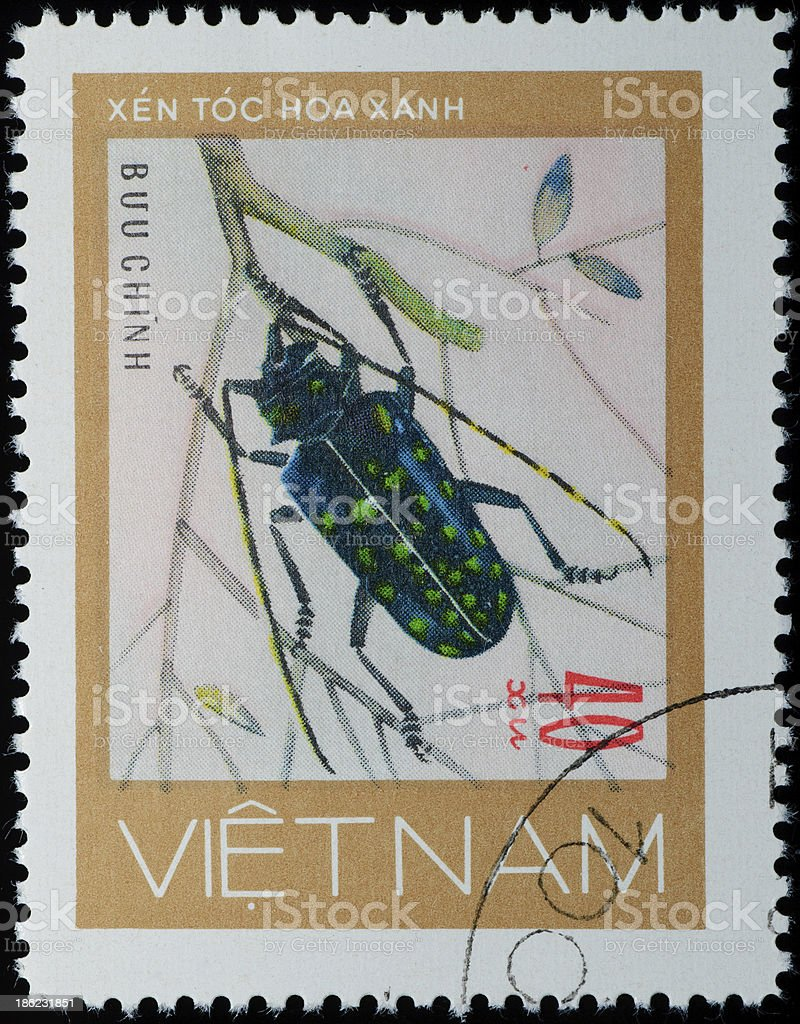 A stamp printed in Vietnam shows animal insect long horn beetle bug,...
