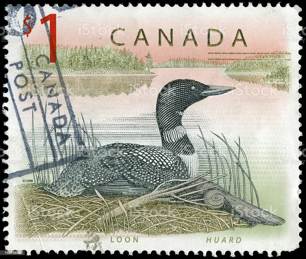 Stamp from Canada with bird motif stock photo