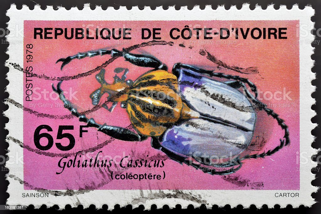 Stamp with beetle stock photo