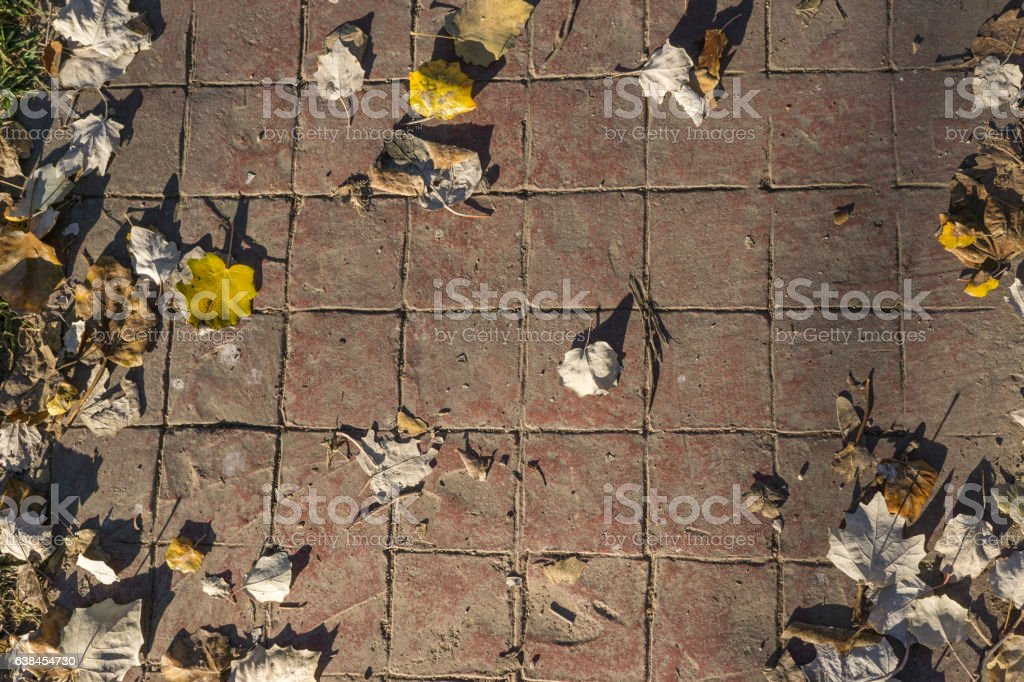 Stamped concrete pavement outdoor flooring decorative appearance of tiling, red stock photo