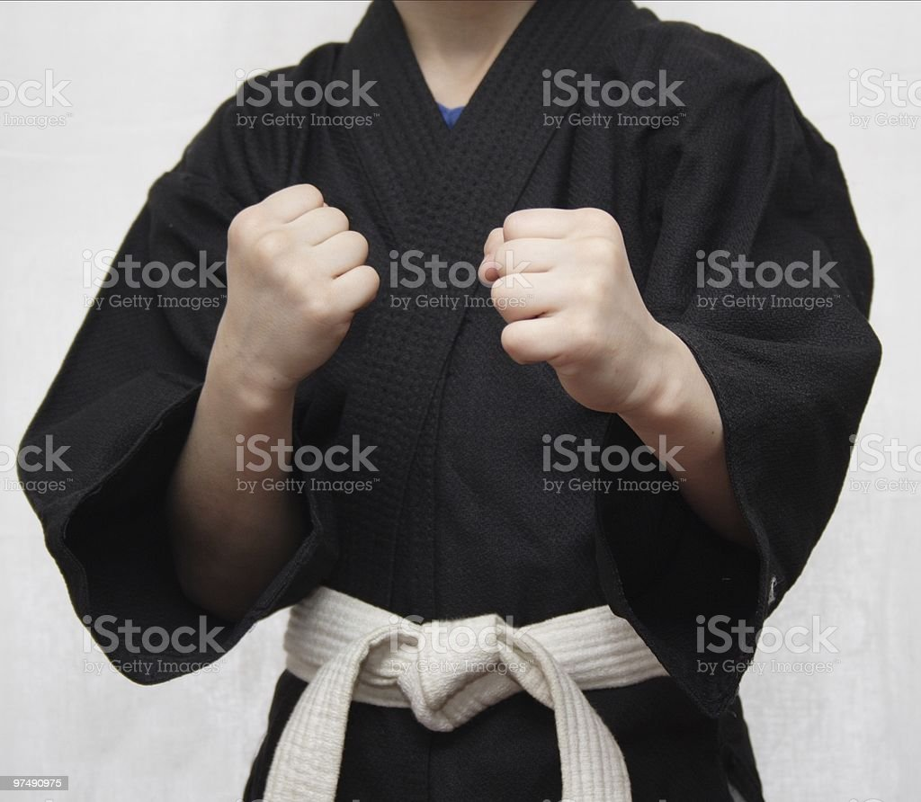Stance in Martial Arts. royalty-free stock photo