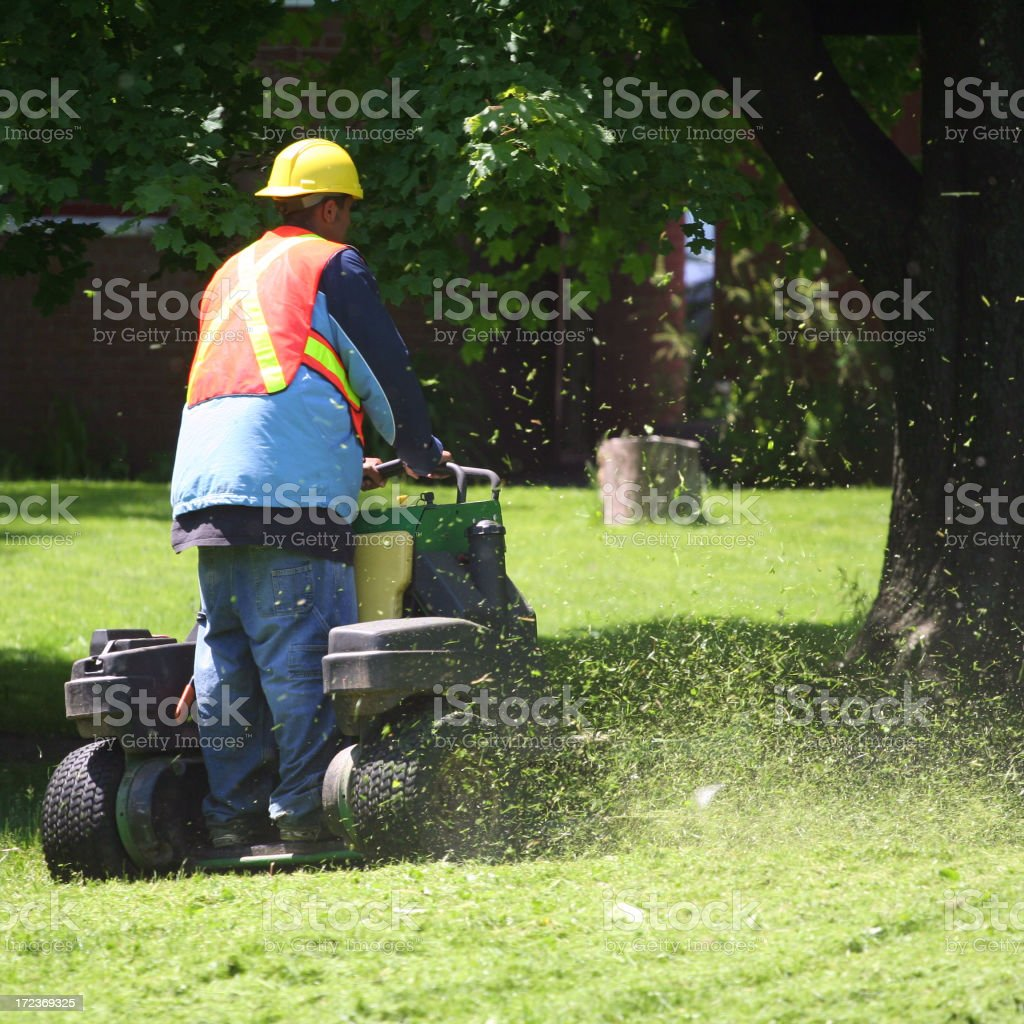 Stand On Mower royalty-free stock photo