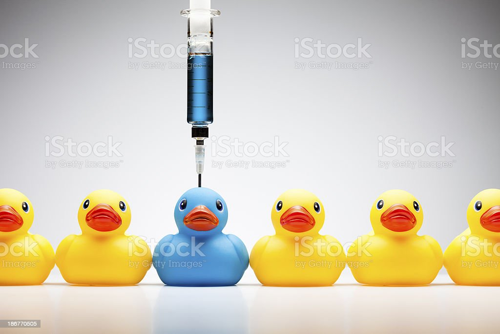 Stand out from the crowd - Rubber Duck Color Individuality stock photo