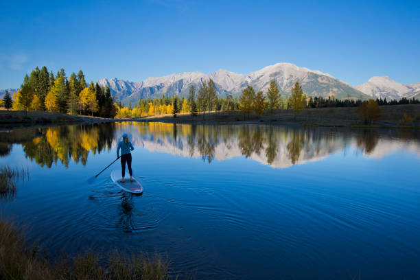 Stand Up Paddleboard A woman enjoys a stand up paddleboard trip on a lake in the Rocky Mountains of Canada. reflection lake stock pictures, royalty-free photos & images