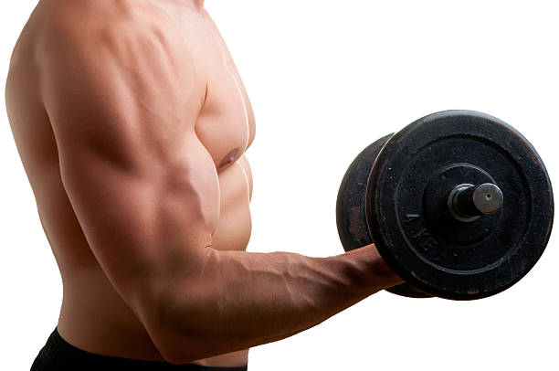Standing Bicep Dumbbell Curl stock photo