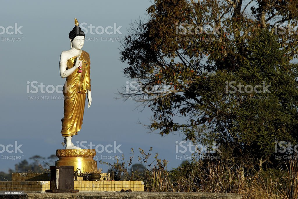 Standing Buddha statues in forest royalty-free stock photo