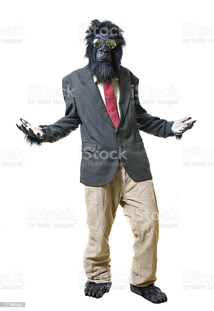 Standing Business Gorilla Asking a Question royalty-free stock photo