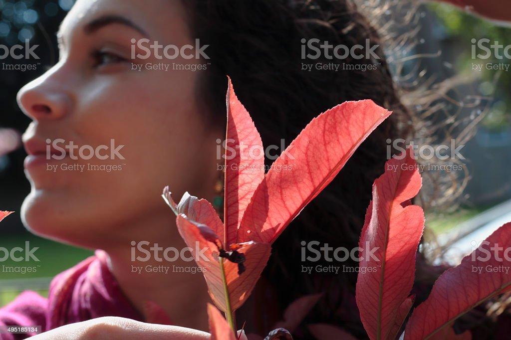 Photinia x fraseri Red Robin canadian outdoor girl profile stock photo
