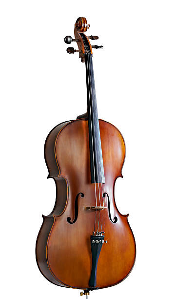 Standing cello against a white background stock photo