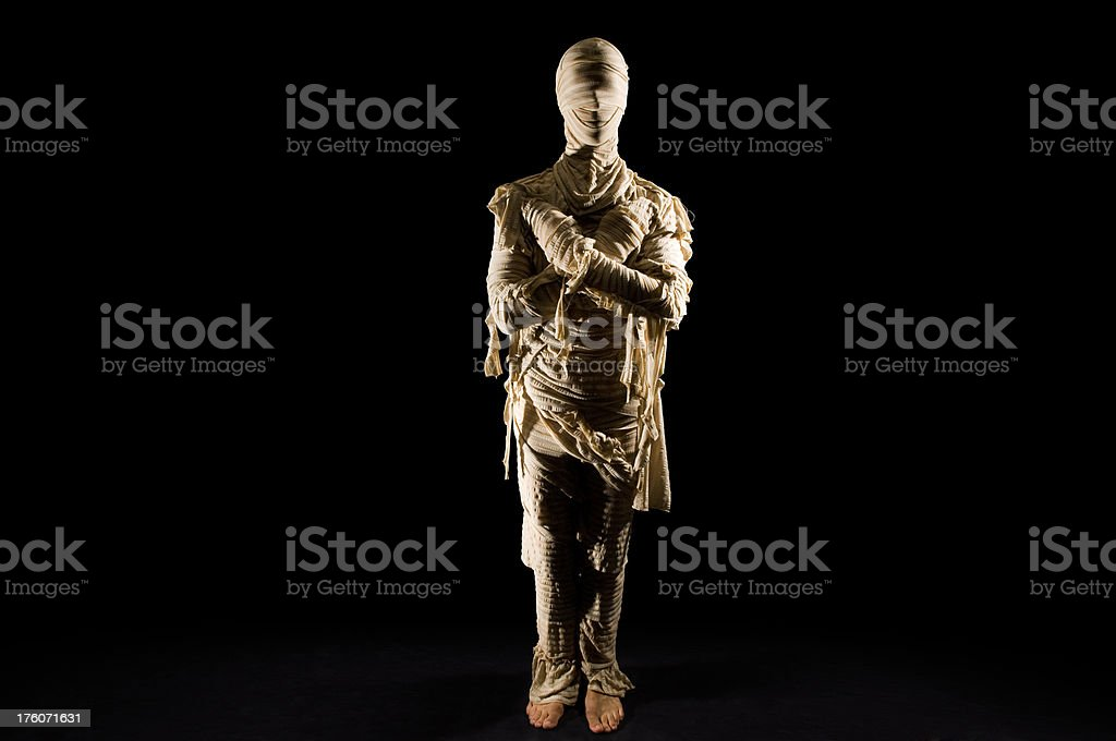 Standing Mummy royalty-free stock photo