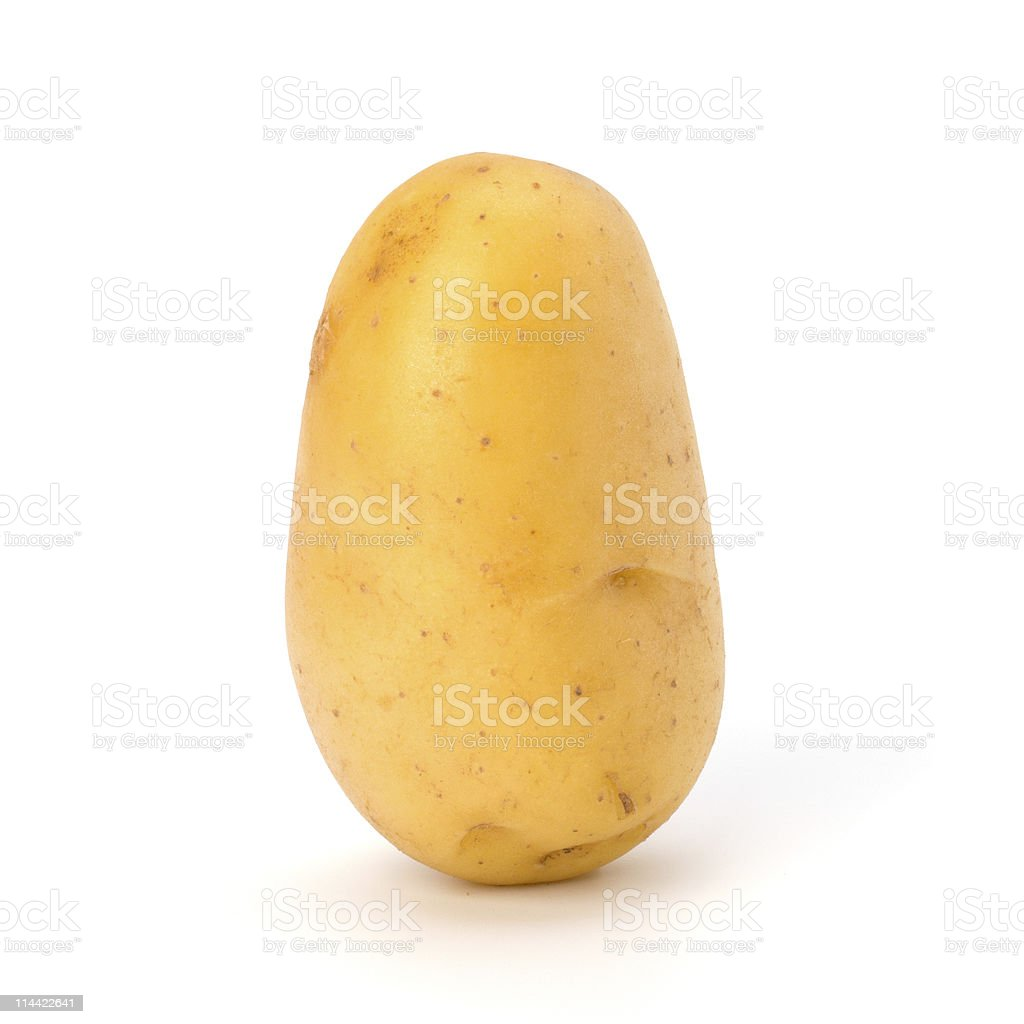 Standing new potato and green parsley with white background stock photo