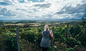 Rearview of a blond female visiting the vineyard with a beautiful scenic background