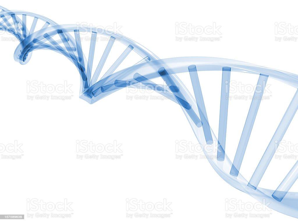 ADN 3D se - Photo