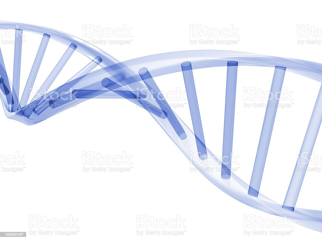3D DNA Stands royalty-free stock photo