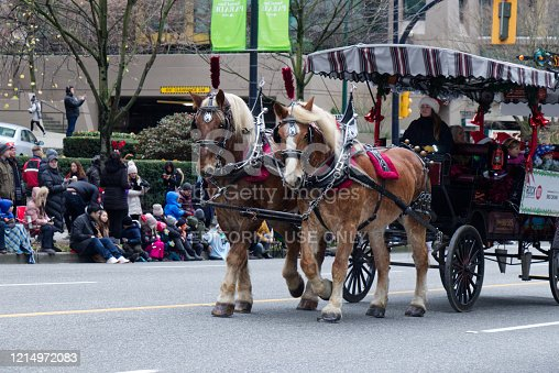 Vancouver, Canada - December 1, 2019: Stanley park horse drawn tours company takes part in the annual Santa Claus Parade In Vancouver