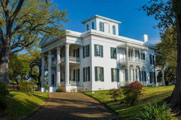 stanton hall mansion, natchez, mississippi - south stock pictures, royalty-free photos & images