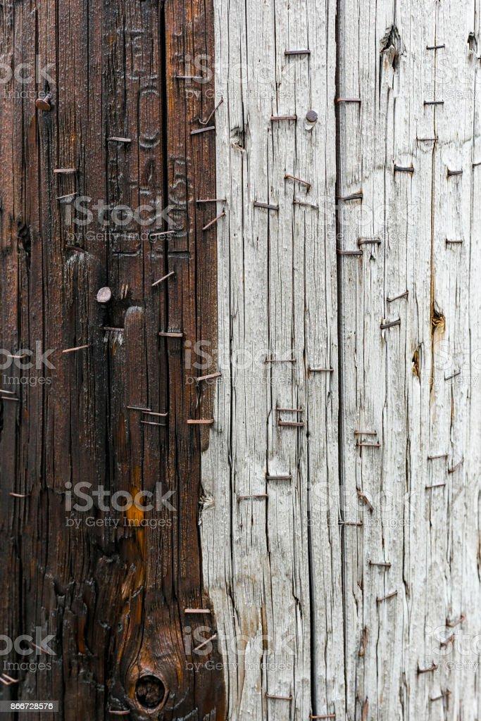 Stapled half wet wooden pole stock photo