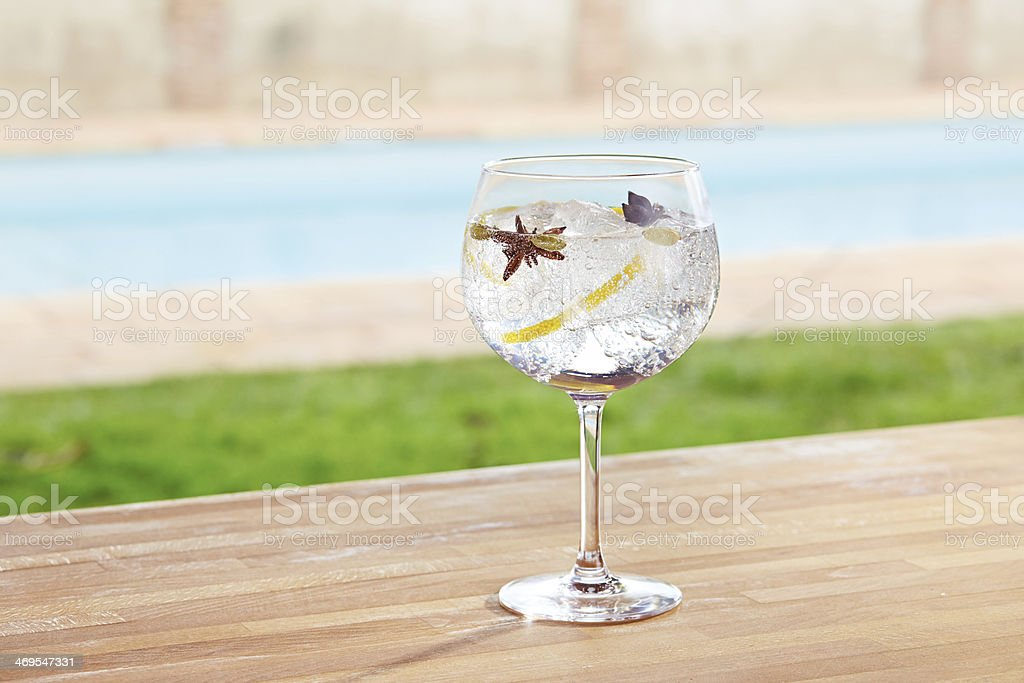 Star anise and cardamom gin tonic cocktail - Royalty-free Alcohol Stock Photo