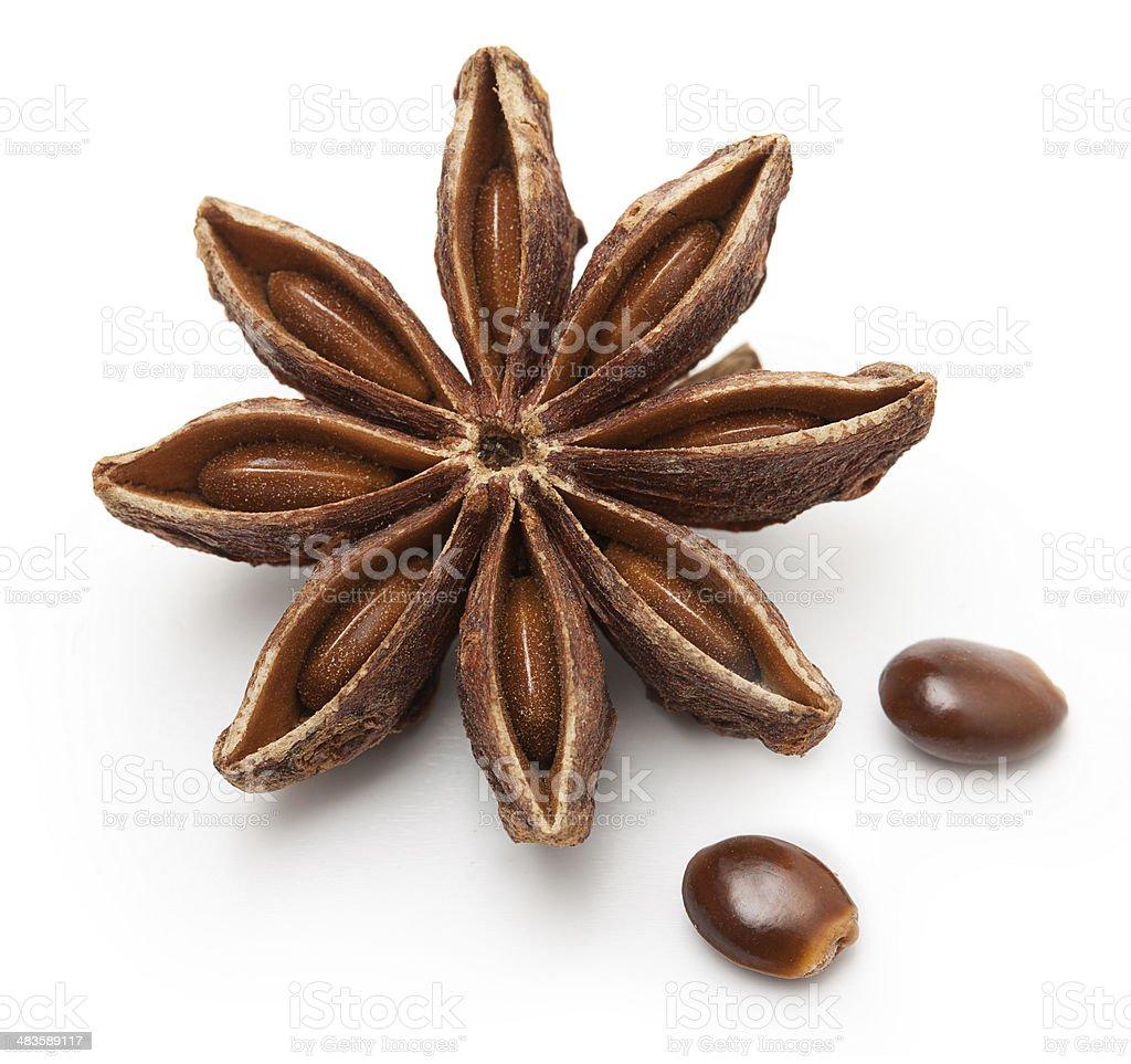 Star anise, badiane isolated stock photo