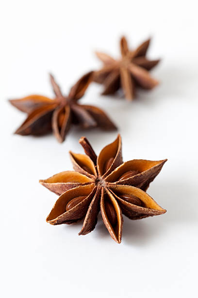 star anise  star anise on white stock pictures, royalty-free photos & images