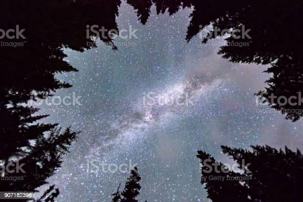 Photo of Star Gazing