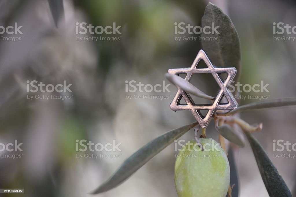 Star of David and olive tree stock photo