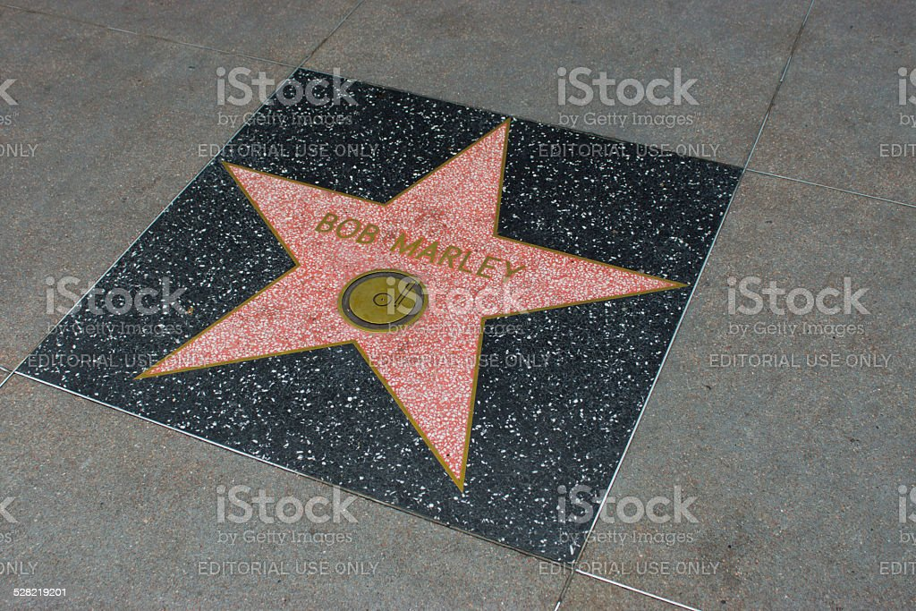 Star on Walk of Fame bildbanksfoto