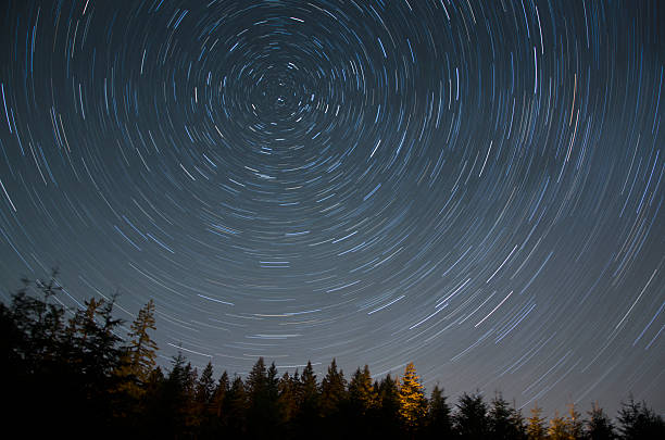 Star Trail Over Forest stock photo