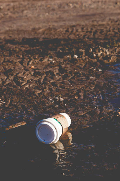 Starbucks Litter on Ground stock photo