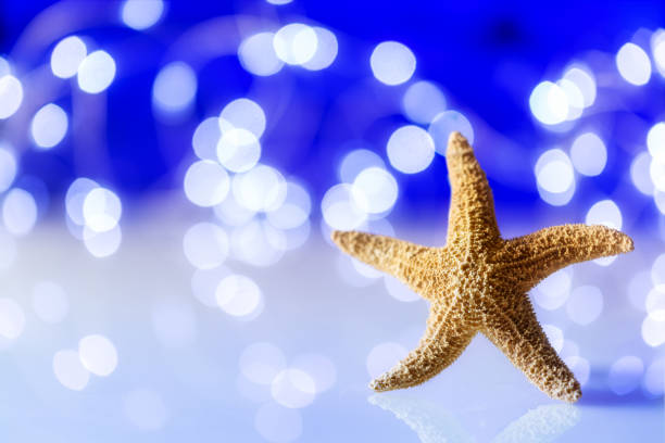 Starfish against a blurred and festive background. Bokeh, selective focus with copy space and lights. Off center composition. Holiday at the beach. stock photo