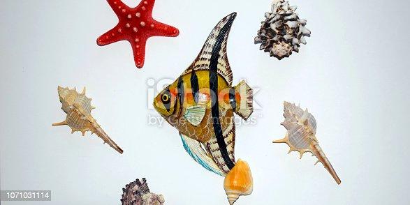 istock Starfish and colorful seashells on white background. Colorful colorful colorful fish. Sea background. 1071031114