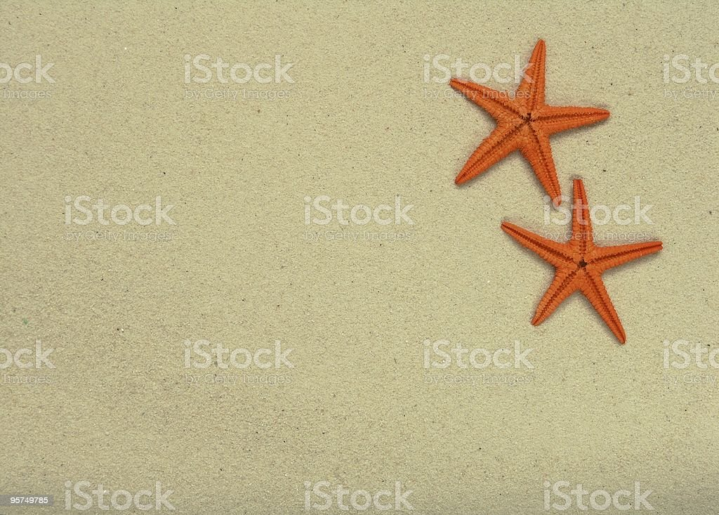 Starfish and sand royalty-free stock photo