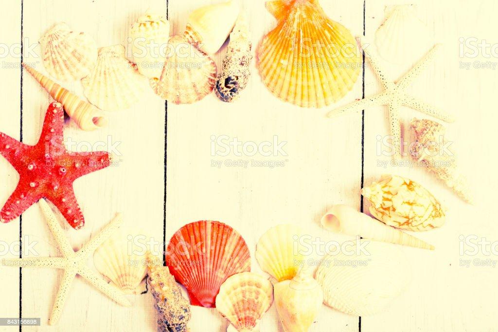 Starfish and seashell stock photo