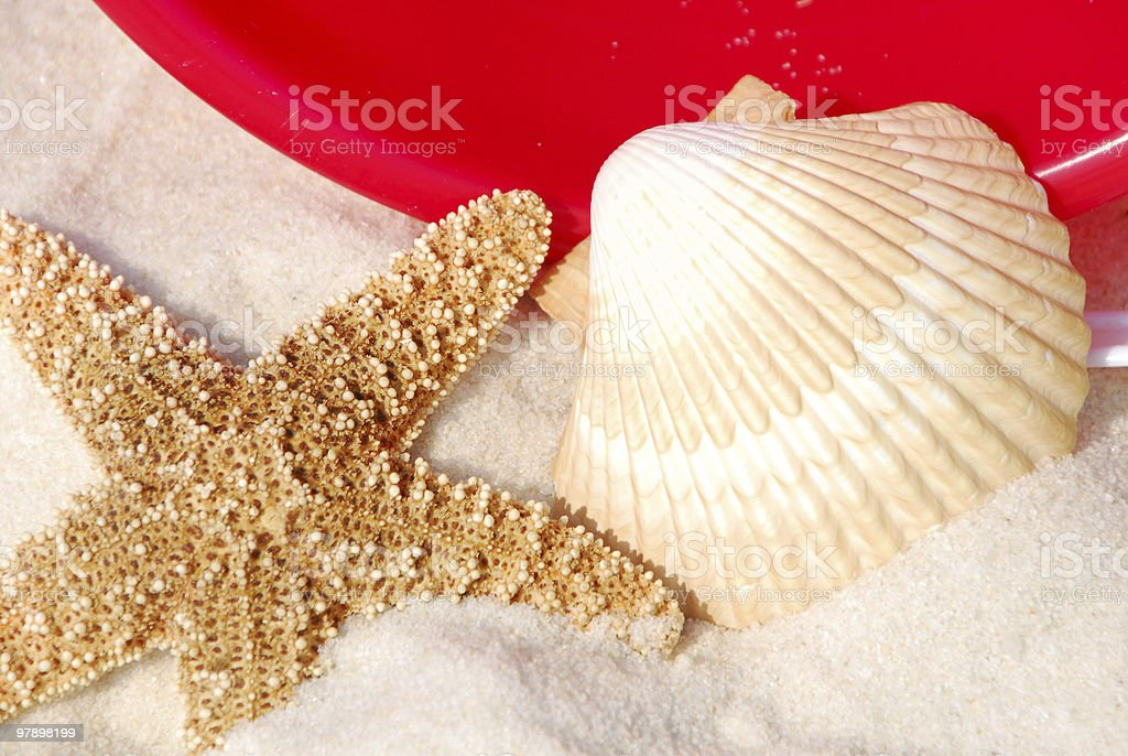 starfish and seashell royalty-free stock photo