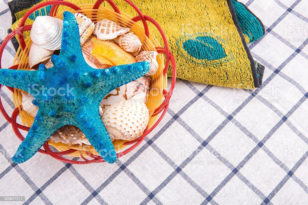 Starfish and shells stock photo