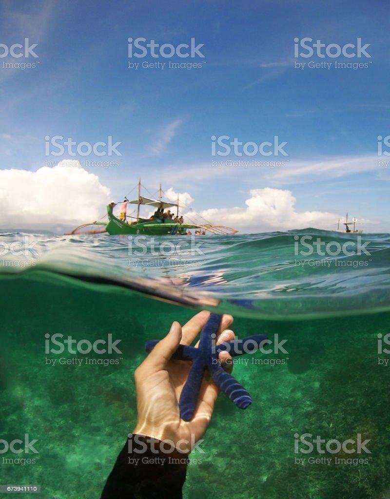 Starfish in the ocean photo libre de droits