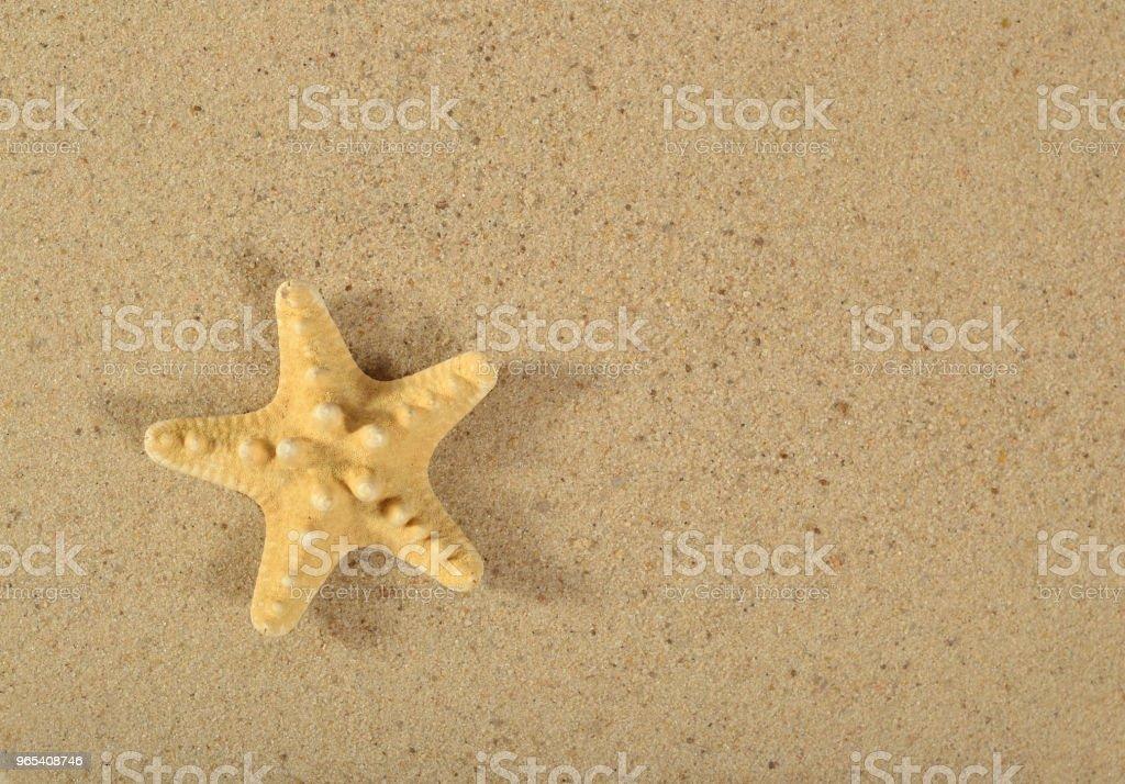 海星在沙子背景 - 免版稅具有特定質地圖庫照片