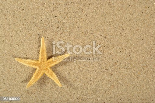 Starfish On A Sand Background Stock Photo & More Pictures of Beach