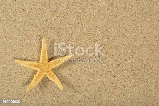 Starfish On A Sand Background - Stockowe zdjęcia i więcej obrazów Bez ludzi