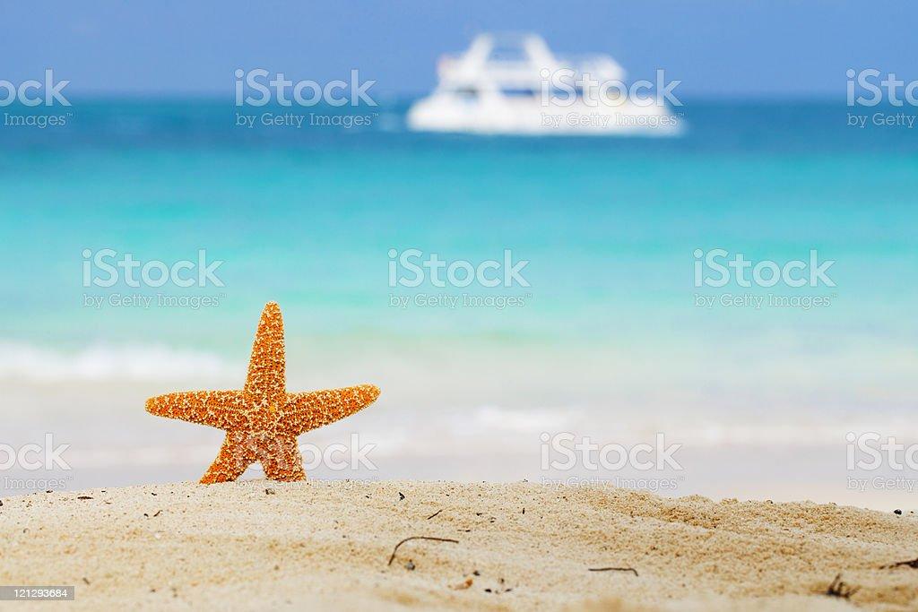 starfish on beach, blue sea and white boat stock photo