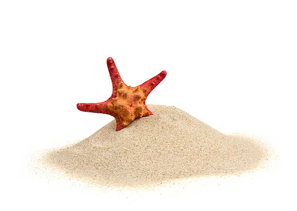 starfish on sand isolated on white starfish on sand isolated on white starfish stock pictures, royalty-free photos & images