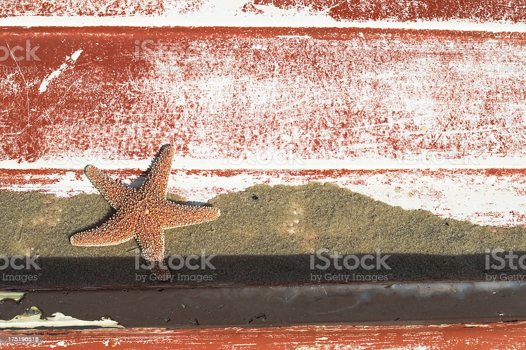 Starfish on the back of a red boat stock photo