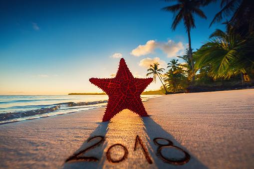 istock Starfish on the beach at sunrise. Punta Cana.Dominican Republic 881583838