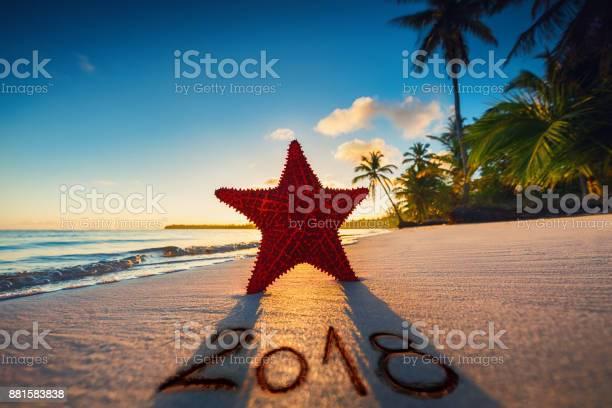 Starfish on the beach at sunrise. Punta Cana.Dominican Republic