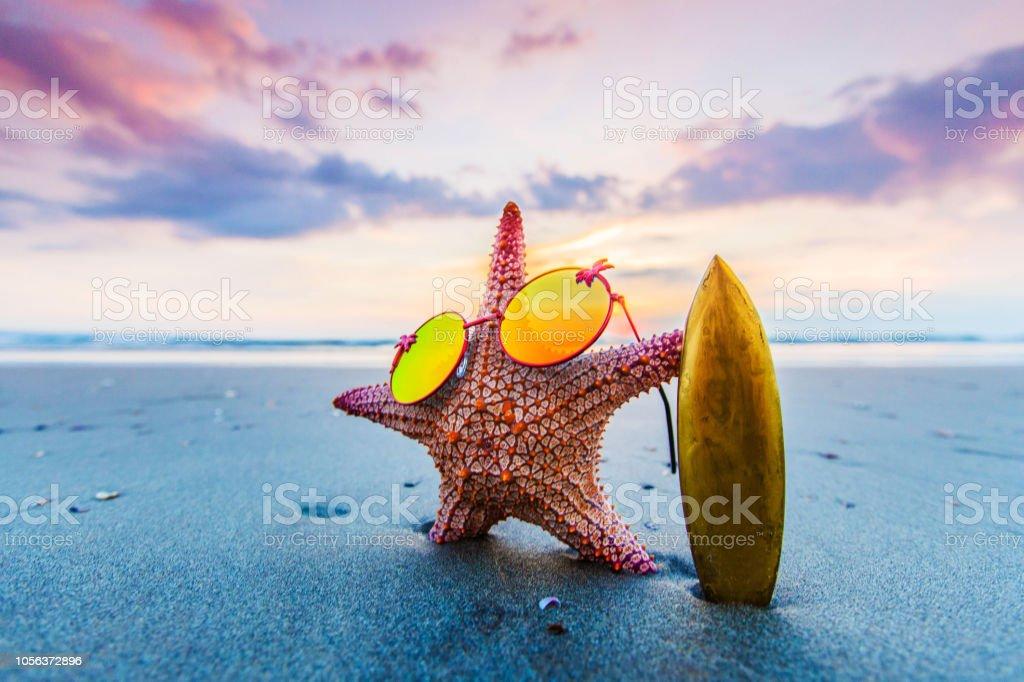 Starfish surfer on beach stock photo