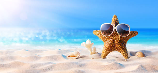Starfish With Sunglasses On The Sunny Beach stock photo