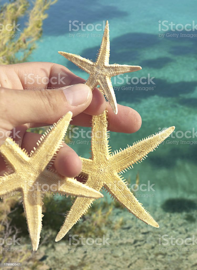 Starfishes in hand royalty-free stock photo